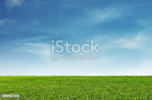Green grass field with blue sky and white clouds background