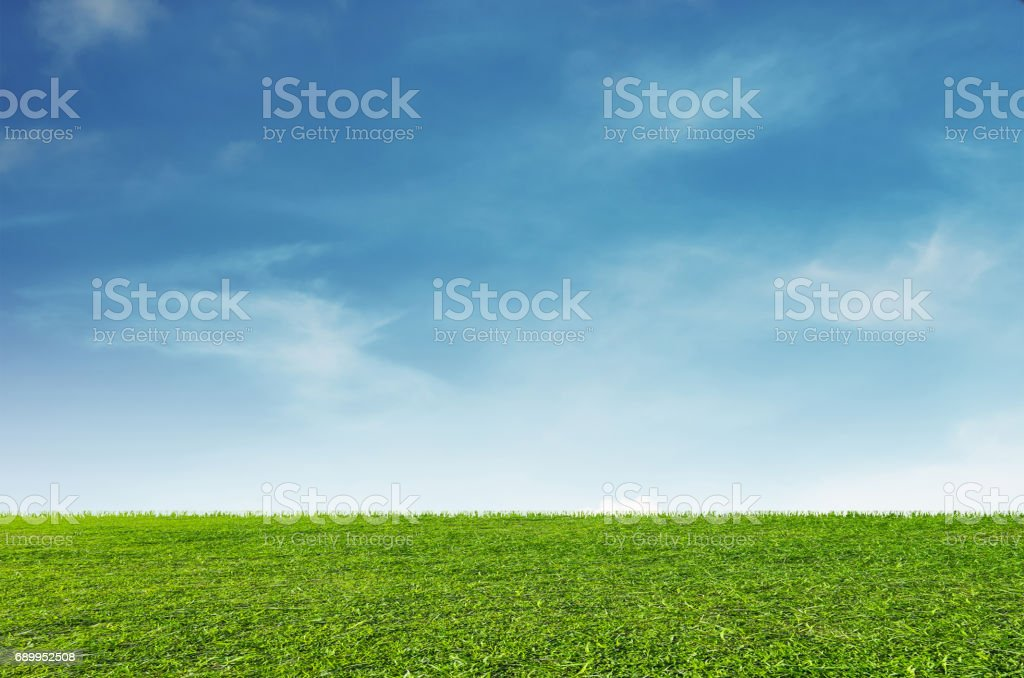 Green grass field with blue sky and white clouds background stock photo