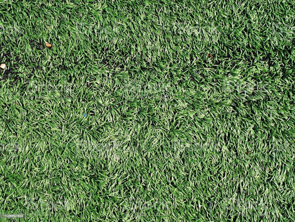 Lawn, Putting Green, The Natural World, Grass, Textured Effect