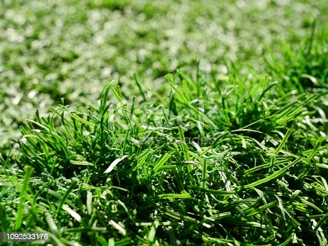 474672896 istock photo Green grass football pitch 1092533176