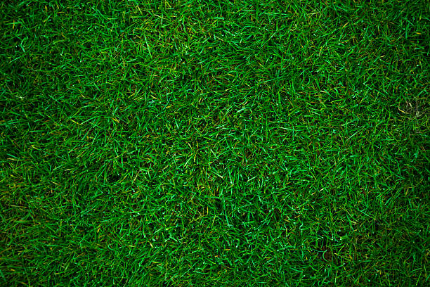 green grass football pitch green grass background turf stock pictures, royalty-free photos & images