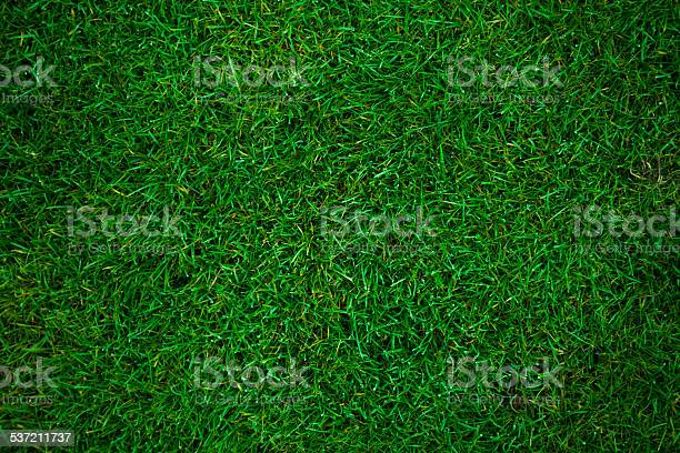 Green Grass Football Pitch Stock Photo - Download Image Now