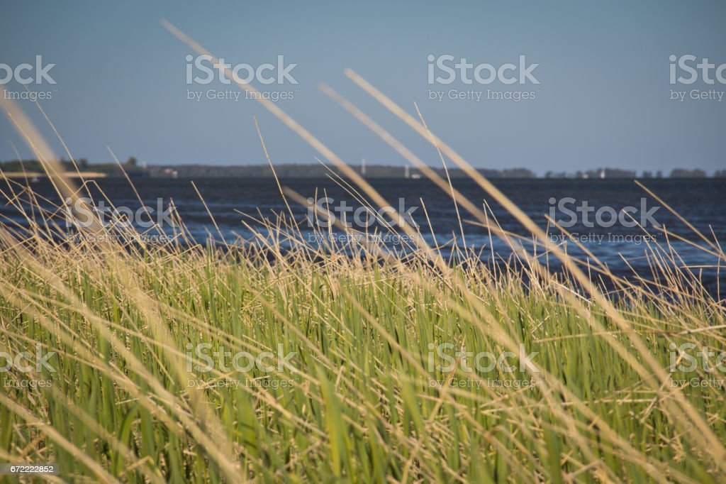 Green grass. Great time on Rügen, Chalk Cliffs, Beaches, Coast and bathing resort Binz. stock photo