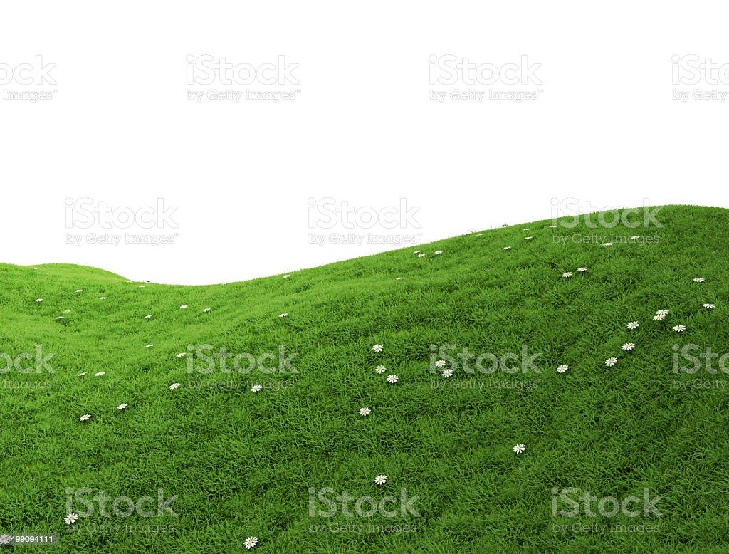 Green Grass hill stock photo