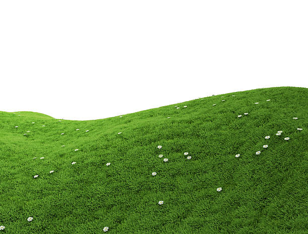 green grass hill - hill stock pictures, royalty-free photos & images