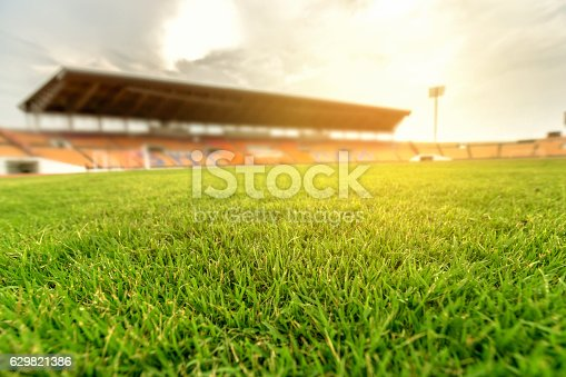 Green grass in soccer stadium with light flare.