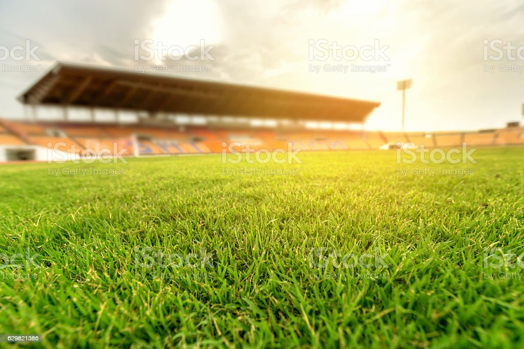 Green grass in soccer stadium with light flare. stock photo