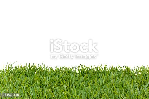 istock Green grass Isolated on white 644562148