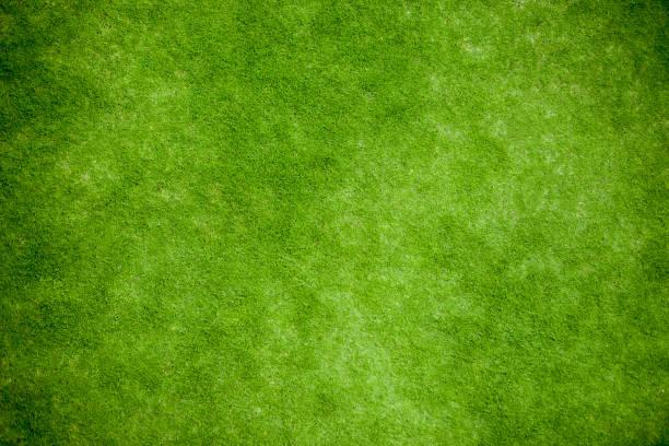 grama verde, opinião superior do gramado - gramado terra cultivada - fotografias e filmes do acervo