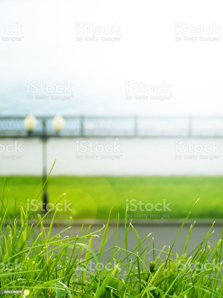 green grass on a blurred background summer sunny waterfront, embankment with a lantern, solar flare stock photo