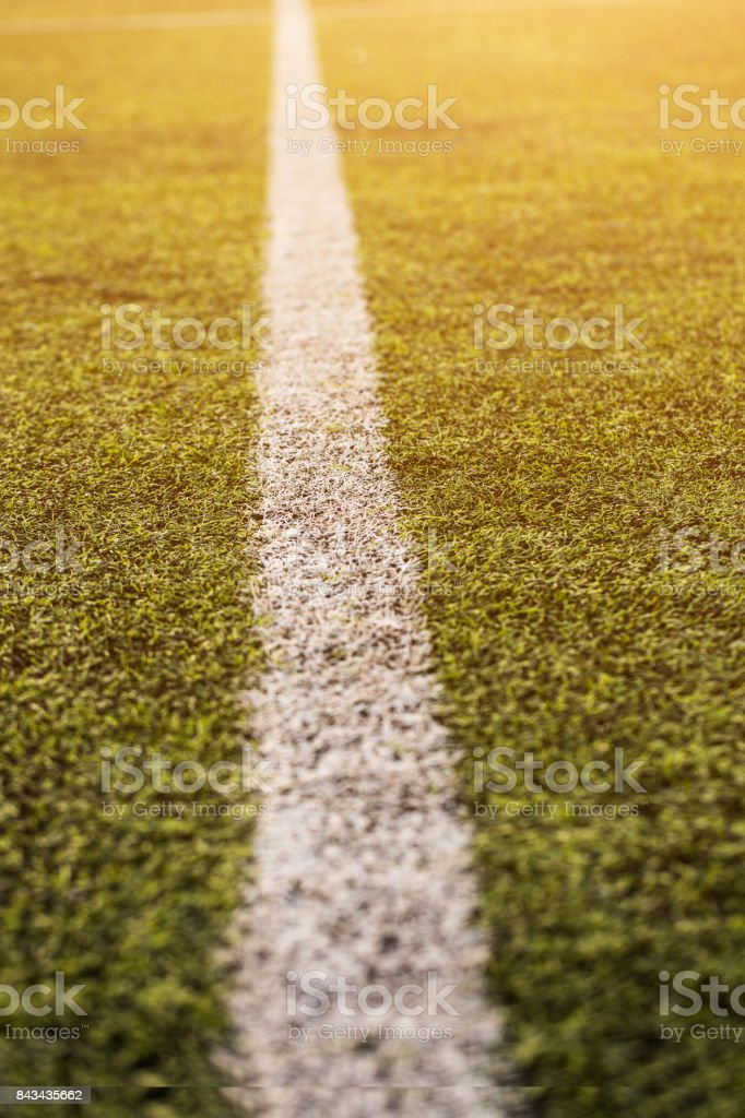 green grass pattern for football sport, Football field, soccer field,...