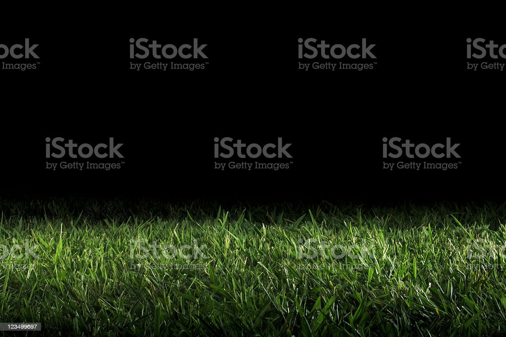 royalty free grass night black backgrounds pictures