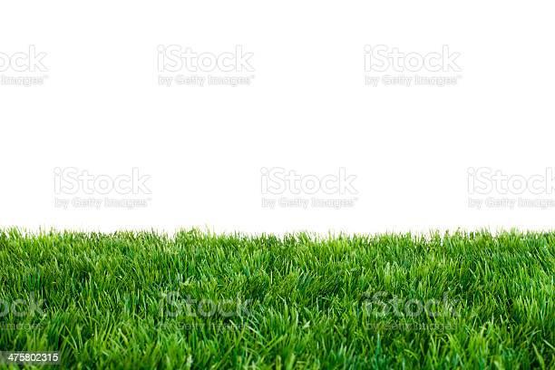 Green grass picture id475802315?b=1&k=6&m=475802315&s=612x612&h=qs xco5qfgz7o0bjrcswhssg5xn2itslblcqgsluqno=