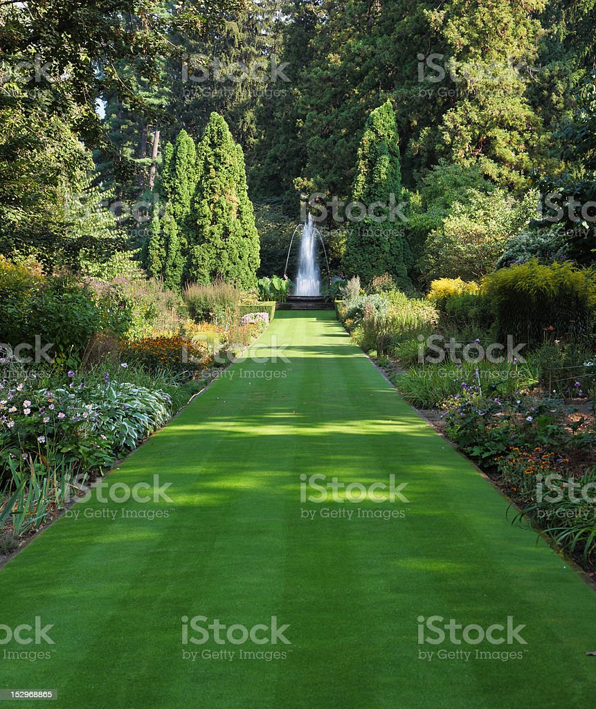 Green grass road in park stock photo