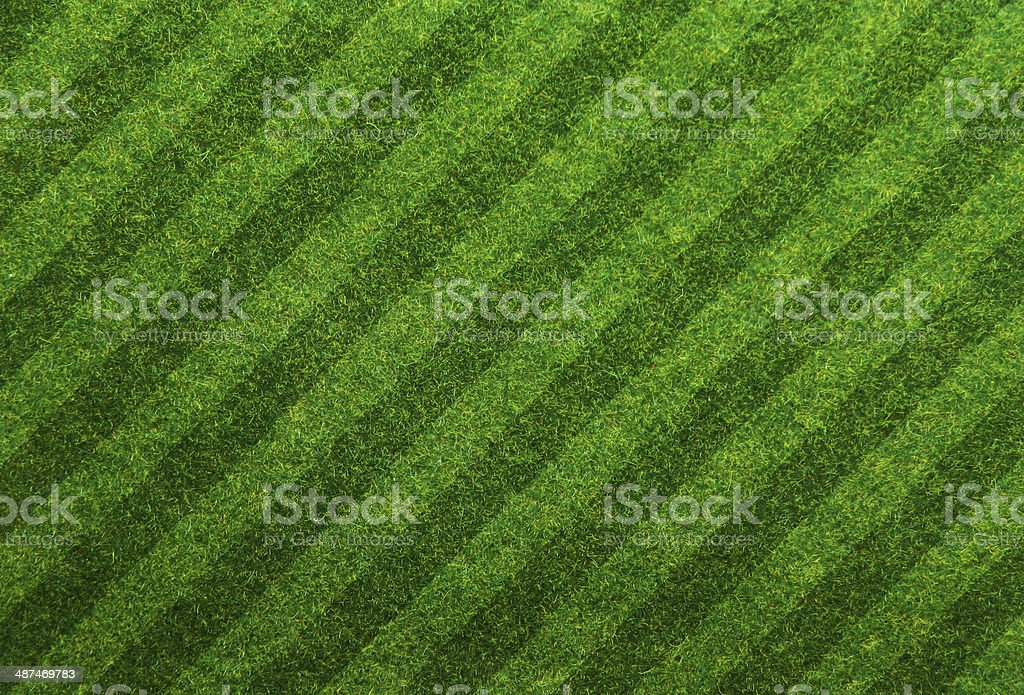 Green grass soccer field background stock photo
