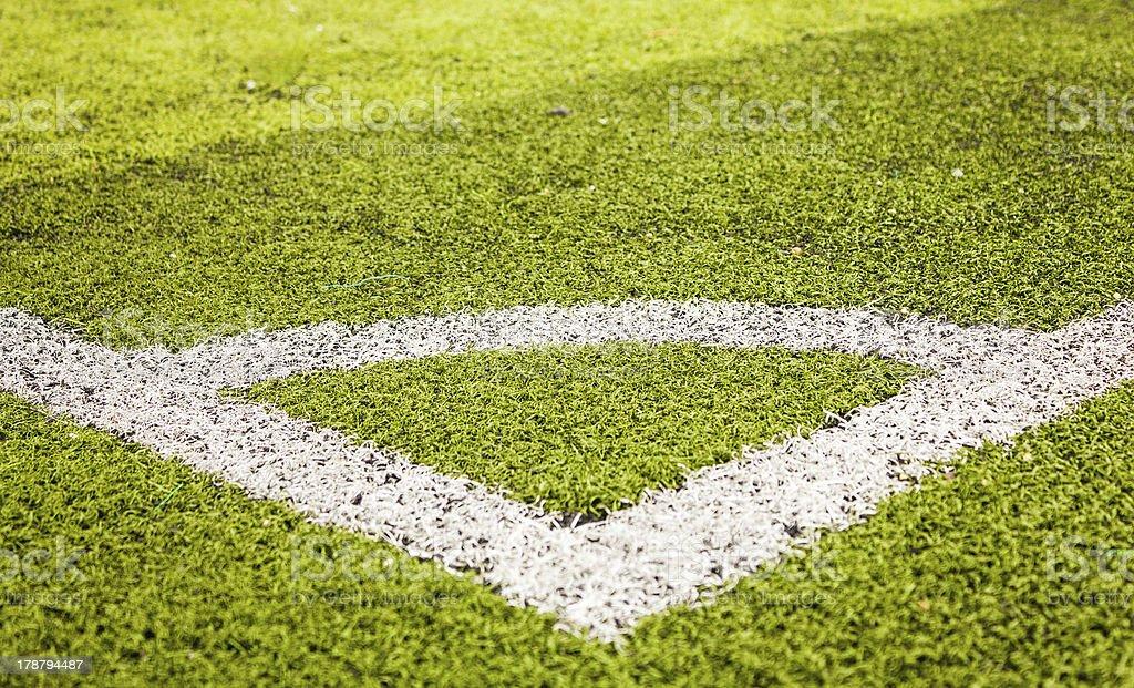 green grass soccer stock photo