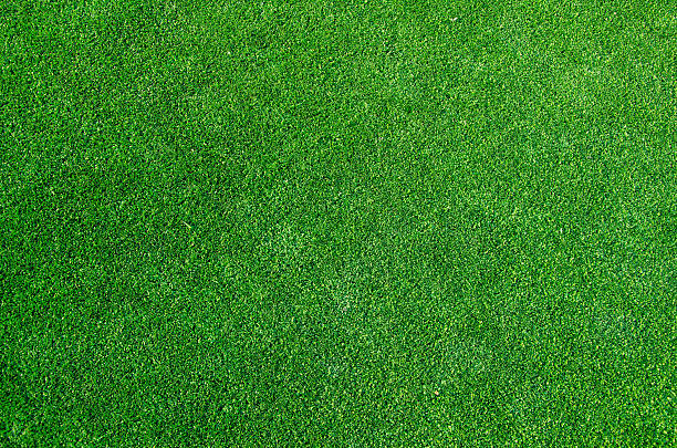 green grass texture background green grass floor texture background turf stock pictures, royalty-free photos & images