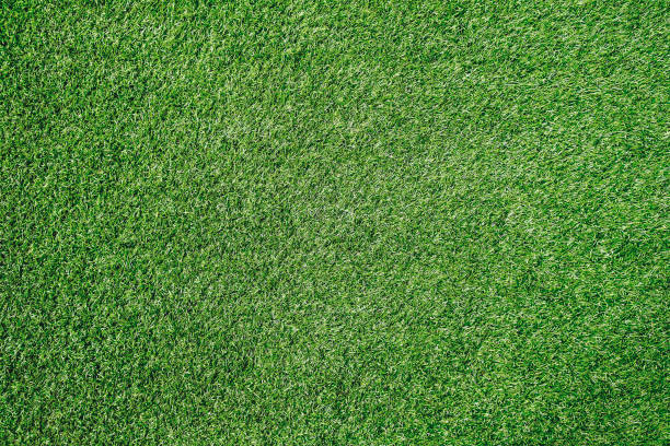 green grass texture background soccer field - erva imagens e fotografias de stock