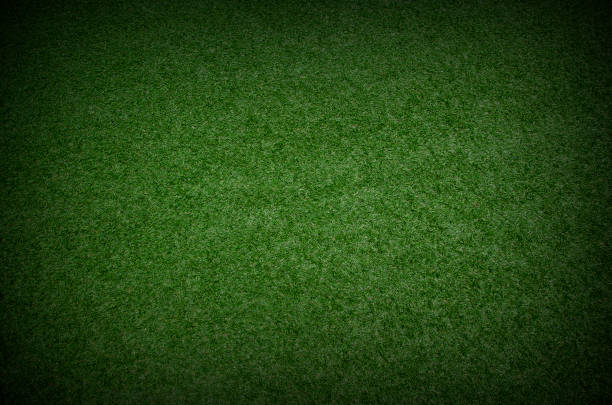 green grass texture background with dark shadow border green grass texture background with dark shadow border turf stock pictures, royalty-free photos & images