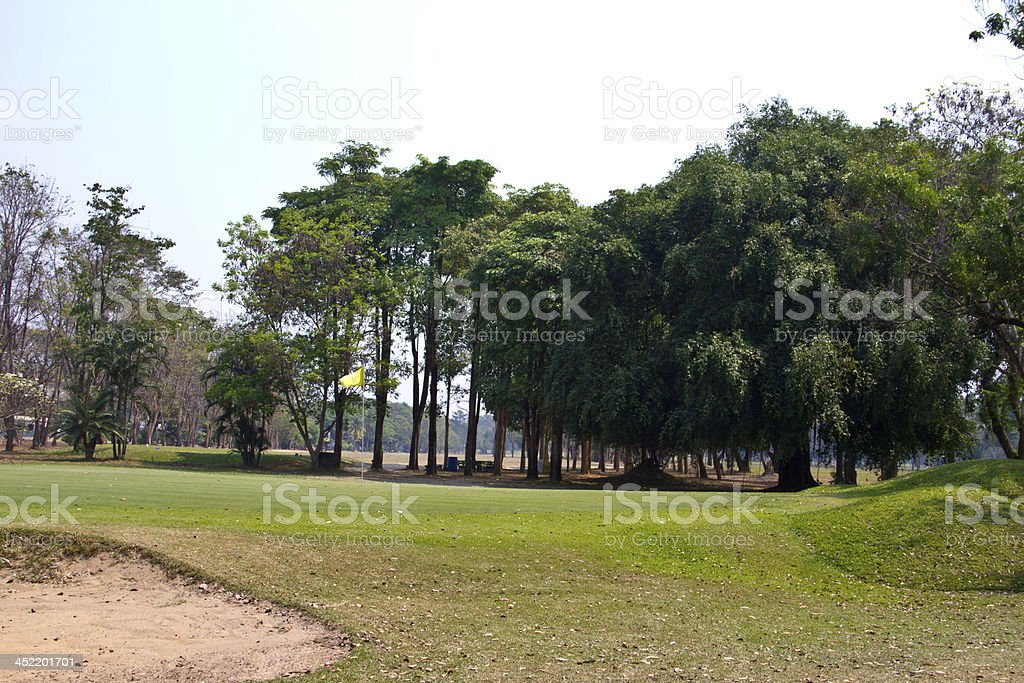 green grass texture from golf field royalty-free stock photo