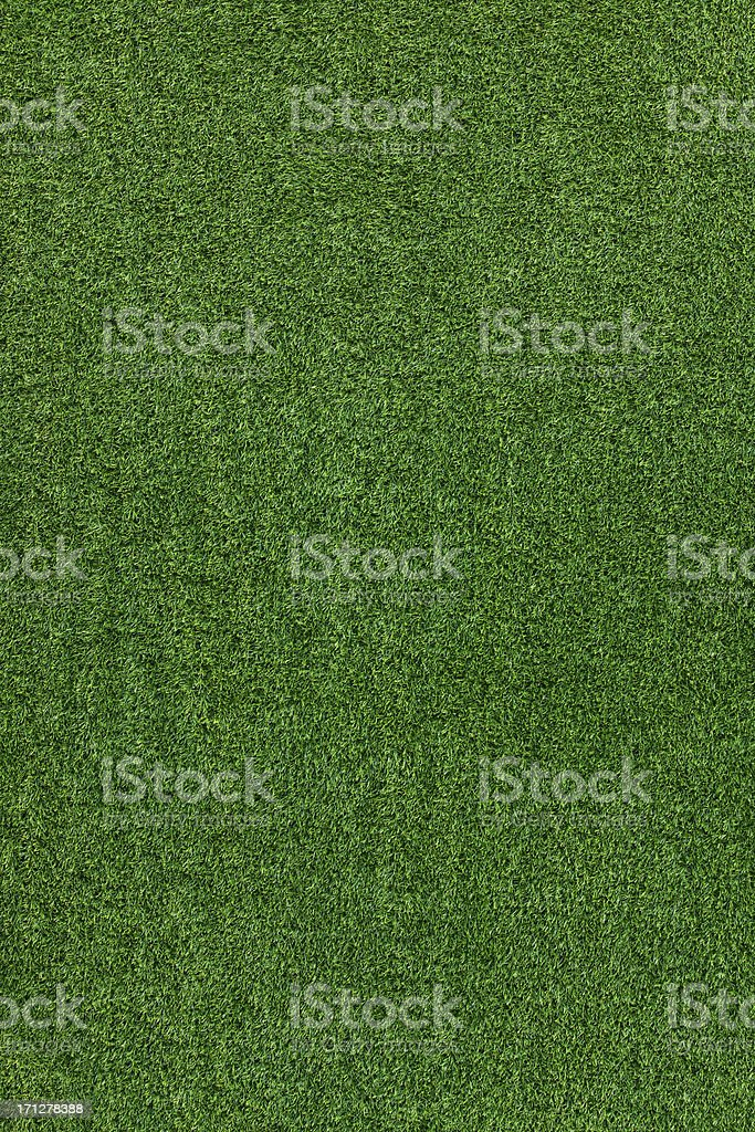 Green grass texture stock photo