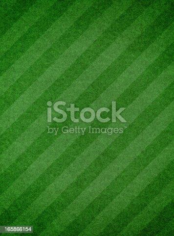 istock Green grass textured background with stripe 165866154