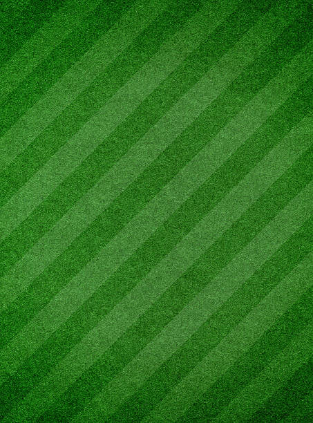 green grass textured background with stripe - gestreept stockfoto's en -beelden