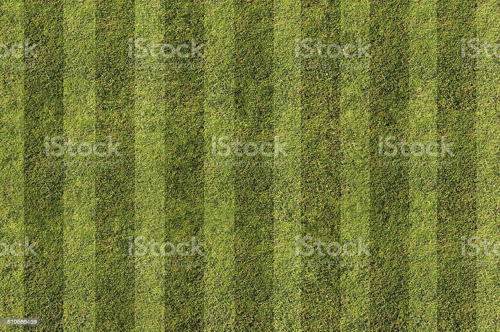 Grüne Gras.  Strukturen und Hintergründe – Foto