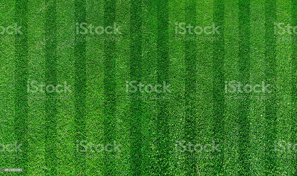 green grass turf stock photo