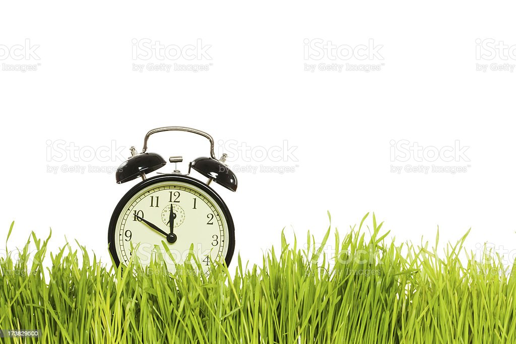Green grass with alarm clock royalty-free stock photo
