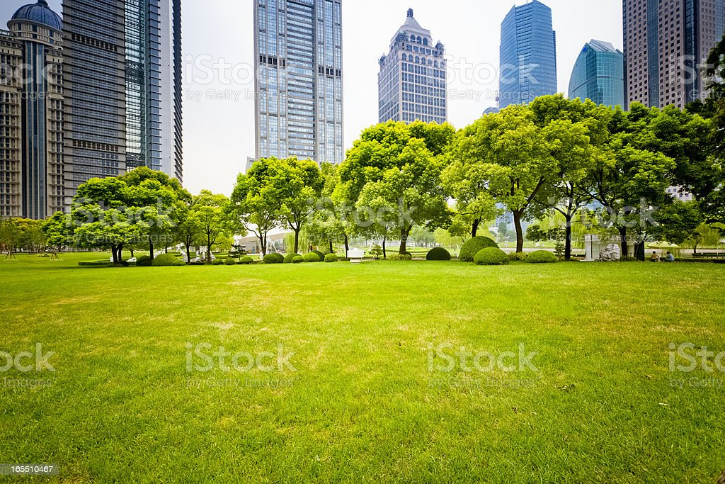 green grass with city building background. royalty-free stock photo
