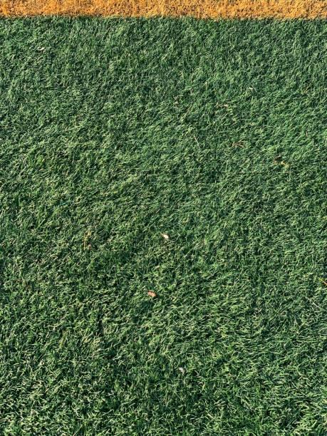 Grünes Gras mit gelber Linie – Foto