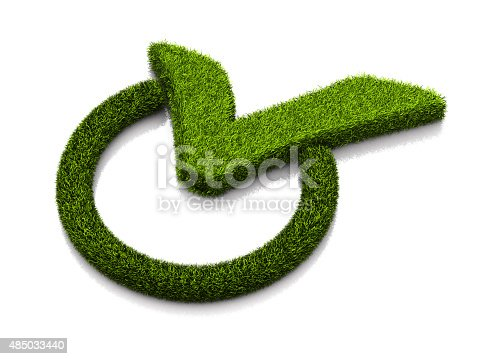 istock Green grassed check mark symbol in the circle on white 485033440