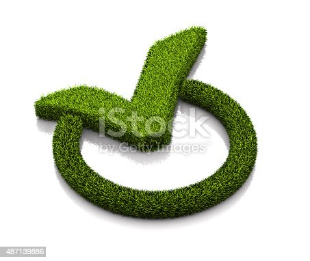 istock Green grassed check mark symbol in the circle on white 487139886
