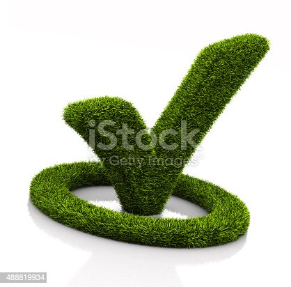 istock Green grassed check mark symbol in the circle on white 488819934