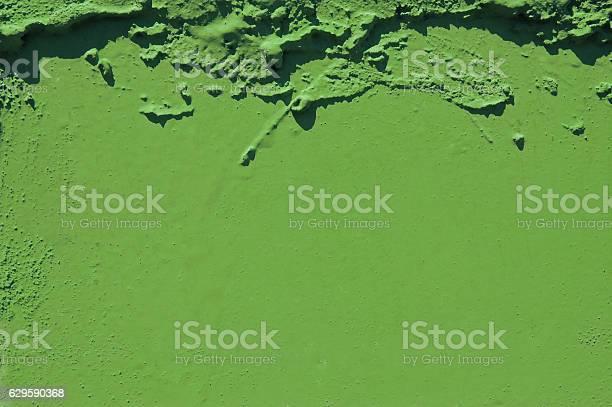 Grünen Grunge Zement Hintergrund Grün Farbe Des Jahres 2017 Pantone Stockfoto und mehr Bilder von 2017