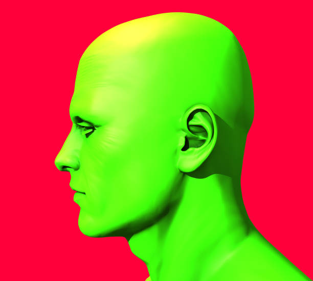 Green Head Man – Foto