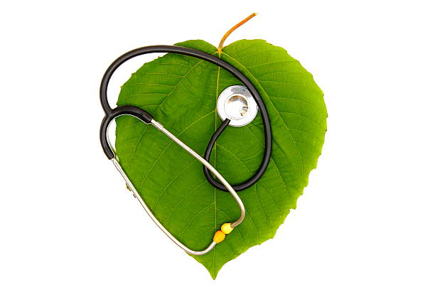 Green Health Concept. stock photo