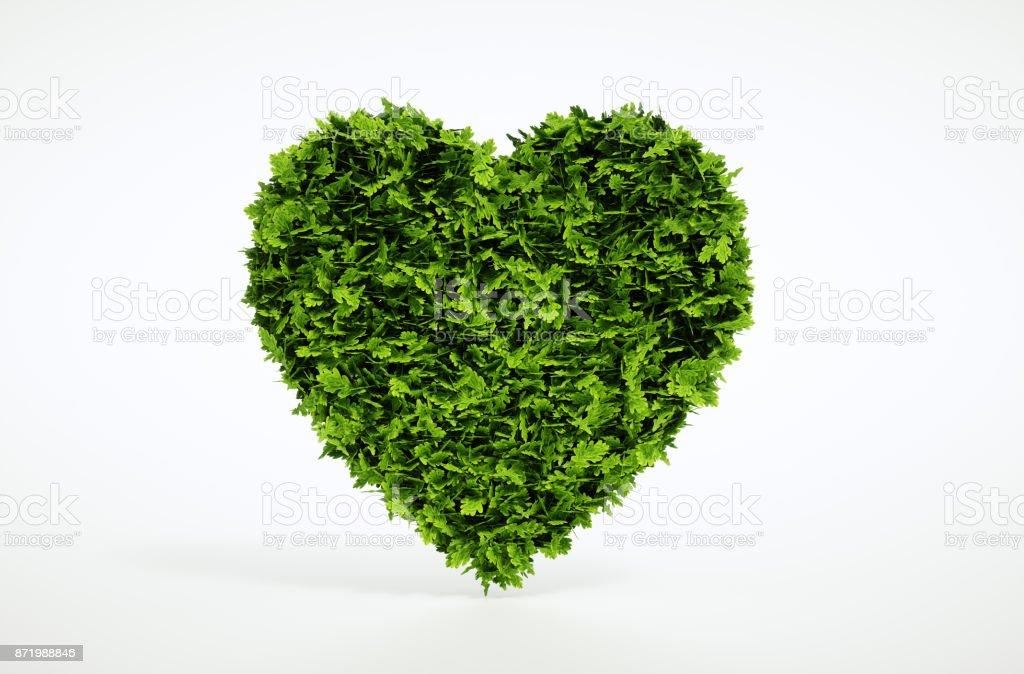 Grünes Herz isoliert auf weißem Hintergrund. 3D Illustration. – Foto