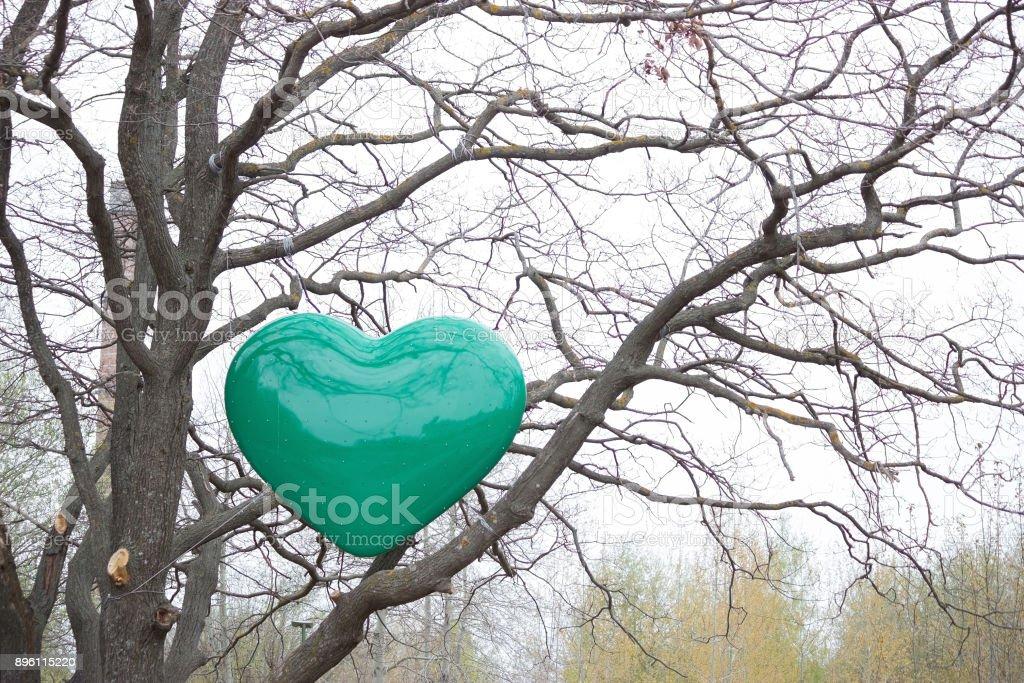 green heart on a tree stock photo