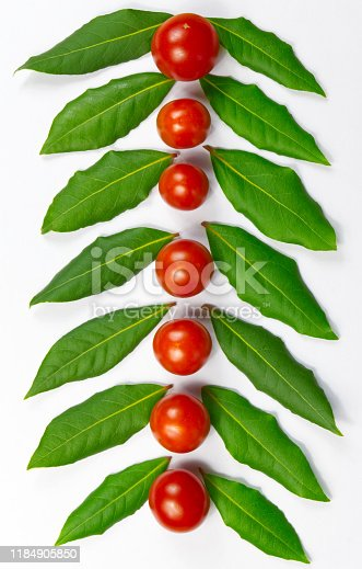 istock Green herb leafs and colorful tomatoes on white background 1184905850