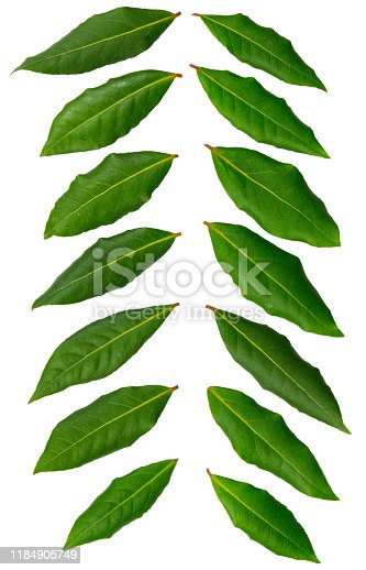 istock Green herb leafs on white background 1184905749