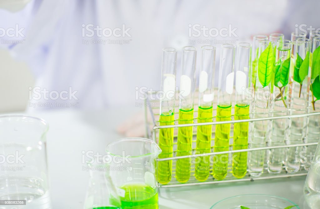 green herbal medicine research discovery vaccine at science lab stock photo