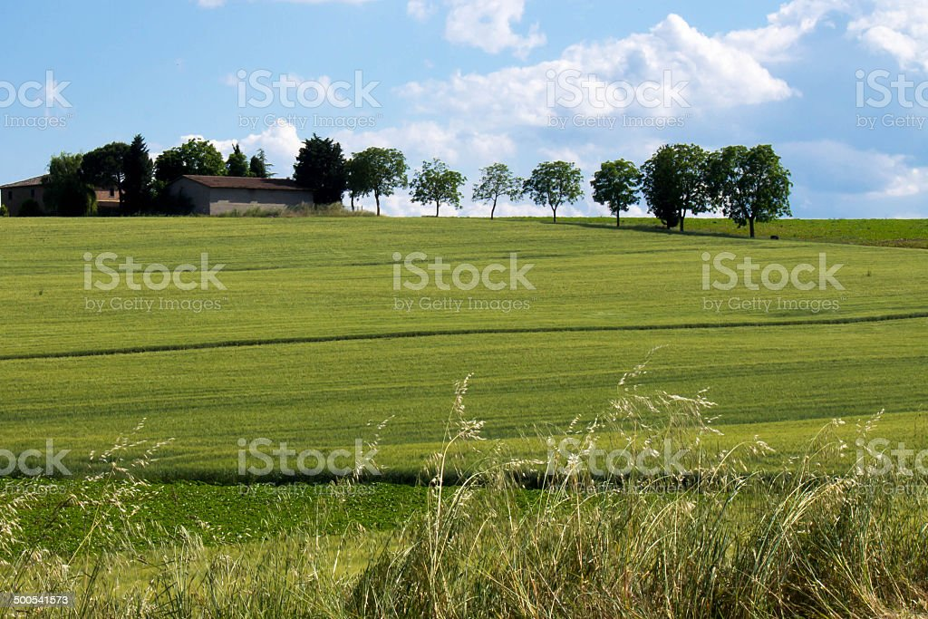 Green hill with a house stock photo