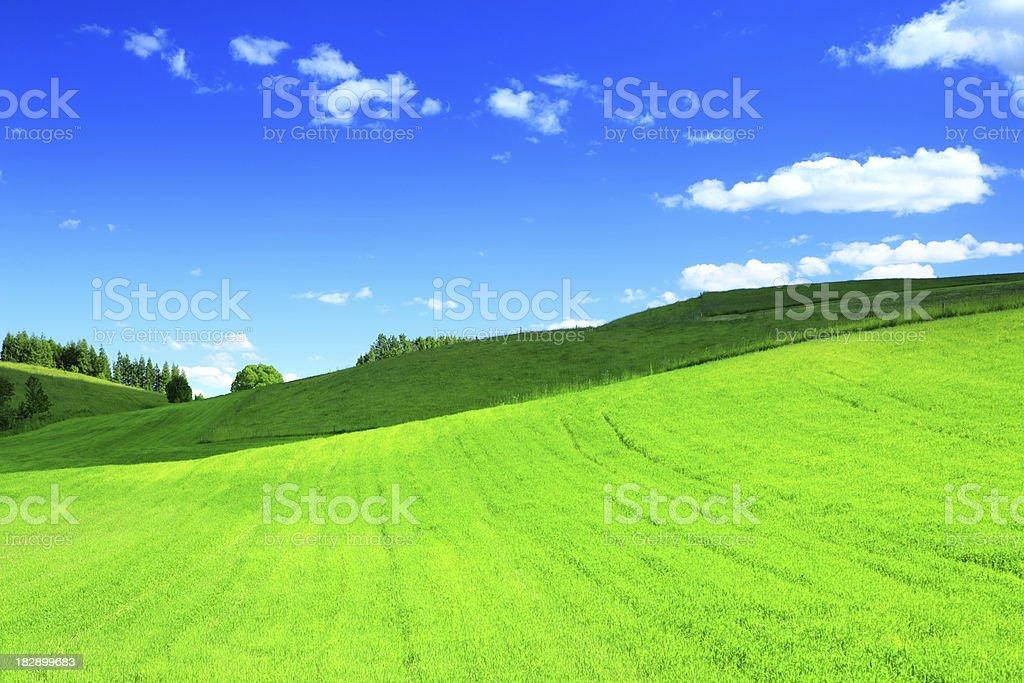 Green hill - XXXL Landscape royalty-free stock photo