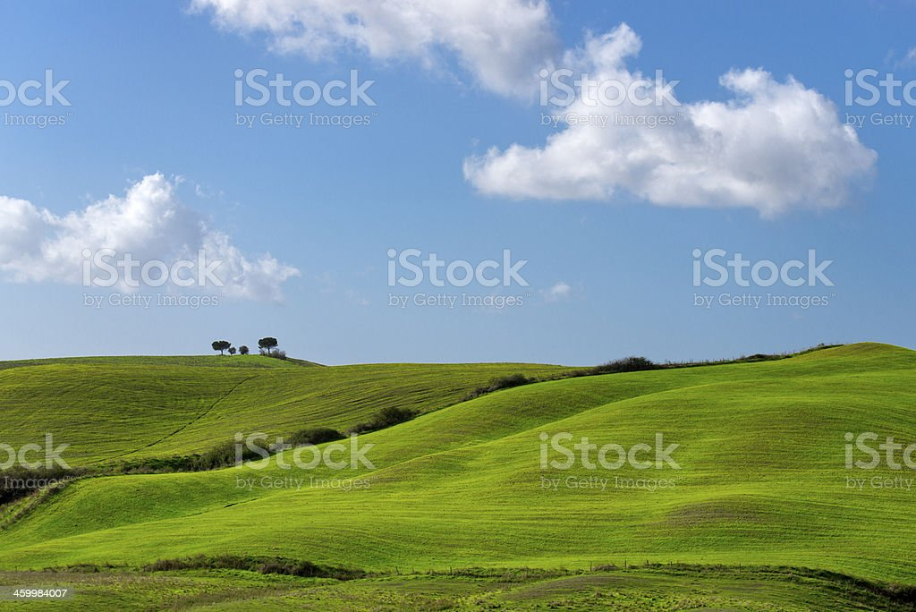Green hills, blue sky, white clouds - Tuscany landscape, Italy stock photo