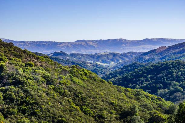 green hills im calero county park, santa cruz mountains, südlich der bucht von san francisco, kalifornien - süd kalifornien stock-fotos und bilder