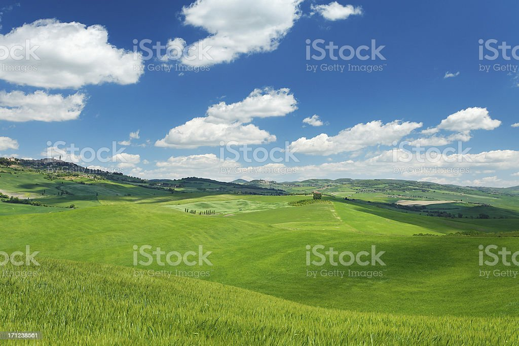 Green hills in Tuscany stock photo