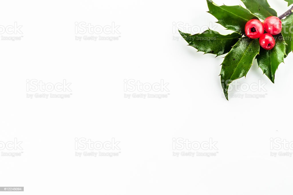 Green holly on white background. Christmas background, copy space stock photo