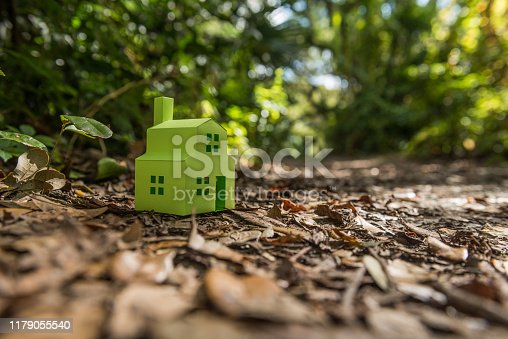 Green house in a natural forest environment.